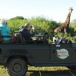Game drive at Thula Thula Game Reserve