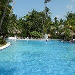 The Main Pool Area
