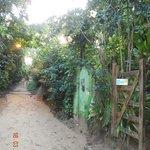Rua para praia Porto de Cima\Entrada da Pousada