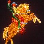 Un cheval brillant de mille feux