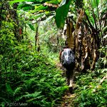 Hiking into the Darien Gap, Panama