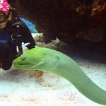 Abdius and the eel