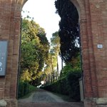 Entrance and walkway