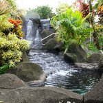 Hot springs were wonderful!