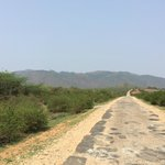 Road to temple
