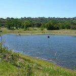 Along the Ahwahnee Hills Regional Park's walking trail