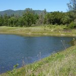 Along the Ahwahnee Hills Regional Park's walking trail