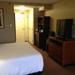 Hilton Garden Inn King Room
