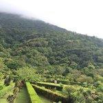 une des vues paradisiaques un mix entre jardin à la francaise et jungle.
