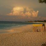 The Public beach (Cabbage Beach, I think)