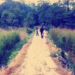 Rumbo a Guatemala caminando