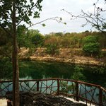 This is a great spot on the nature trail overlooking a cenote