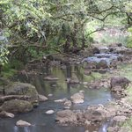 River on the way up
