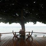 descansando en las reposeras mirando el mar