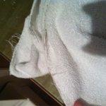Asciugamani rotti e consumati