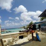 Beautiful blue waters of Bonaire at Habitat.