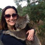 Il Koala!