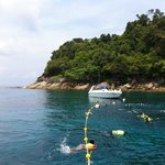 Our snorkeling tour.