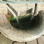 Ici coule l'eau de la fontaine miraculeuse