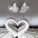 Towel art - new one each day