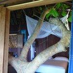 La chambre de Tarzan