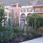 Chambres sur le jardin de cactus