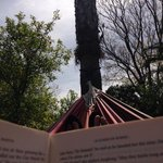 hammock chill out