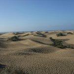 The Dunes at Maspalomas