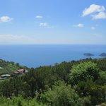 View from room 464 Occhio marino