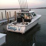出海捕鱼与游览