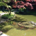 Melzi gardens