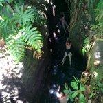 Titou Gorge with Web Tours