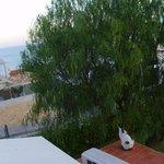 """Blick von """"meinem"""" Balkon"""
