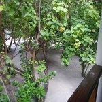 Vue depuis le balcon des chambres 37 et 38