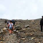 Towards the top there is no vegetation and it is very rocky. The armed guards are usually friend