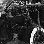 derelict automobile mamiya 2