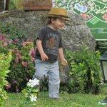 Grandson enjoying  the lovely gardens