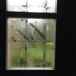 Kondenswasser Fenster