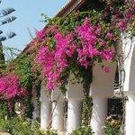 Détail exterieur restaurant Minos beach Art Hôtel