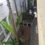 vista vicolo e rifiuti (!!!) dalla camera 205