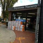 Poyntons Nursery & Cafe