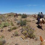 Great horseback experience!