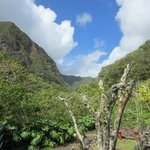 View of the Iao Valley