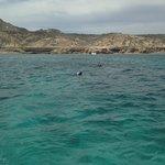 Snorkeling at Cabo Pulmo
