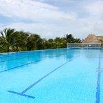 1 of many pools