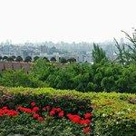 Grand Hyatt City view