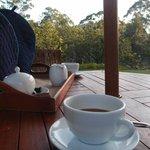 Morning tea in the gardens