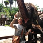 Ken smiles with the Elephants At Ubud