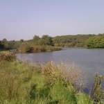 local walk along Brunel Cycle Track to West Pill and Neyland Marina where you can have refreshme