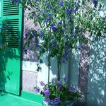 visite à Giverny